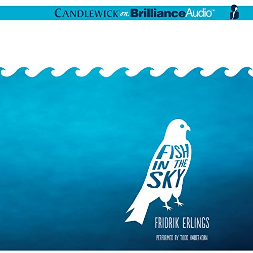 Fish in the Sky audiobook cover art