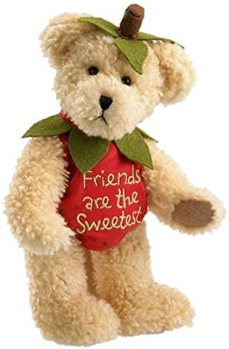 Shortcake Sweetberry by Boyds Bears 8 Plush Bear (Fashion Families Sweetberry Collection) by Enesco