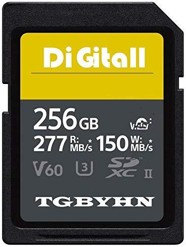 Scheda di memoria professionale SD Memory SDXC Card 256 GB UHS-II Memory SD Card,V60, C10, U3, compatibile con videocamere e Video Cameras (256 GB)