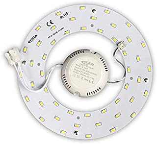 Neon corona led circolina con calamita magnetica piastra 12W 18W 24W luce Bianca