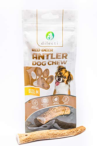 Deer Antler chews for dogs - dog chew made from natural, carefully selected deer antler, rich with protein and minerals (size M)