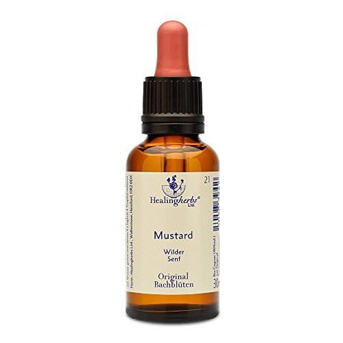 Healing Herbs Bachblüten Mustard Tropfen, 30 ml