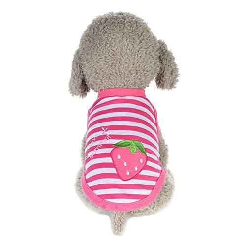 Hundehalsband mit Tuch Verstellbar Hund Halstuch Halsband für Kleine Hund, Welpen, Katze, Haustier