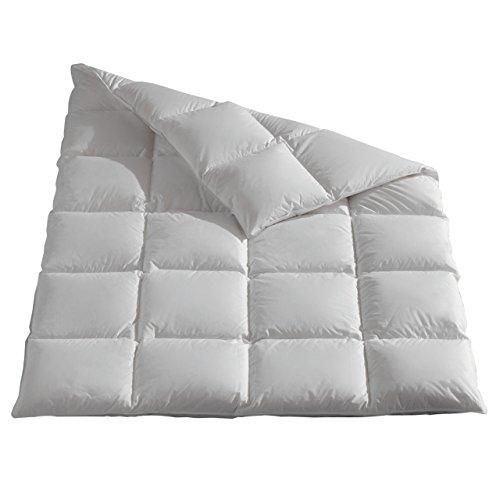 Sannwald Gänse-Daunen Kassettenbett natürlich besser extra warm 135x200 cm Winterdecke