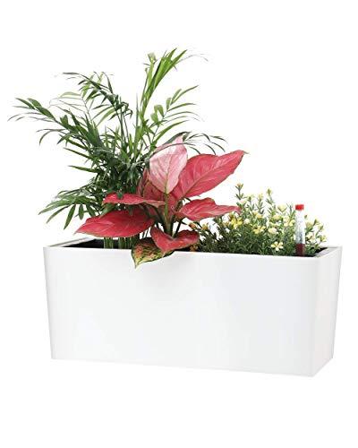 SAROSORA Maceta rectangular de 35,56 cm con indicadores de nivel de agua para plantas y flores, hogar, jardín, interior, suculentas, macetas de hierbas   caja de ventana (1, blanco)