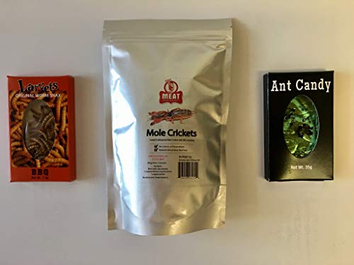 Meat Maniac Edible Insects | Sampler Gift Pack | Mexican Spice Larvets, BBQ Mole Crickets & Apple Ant Candy