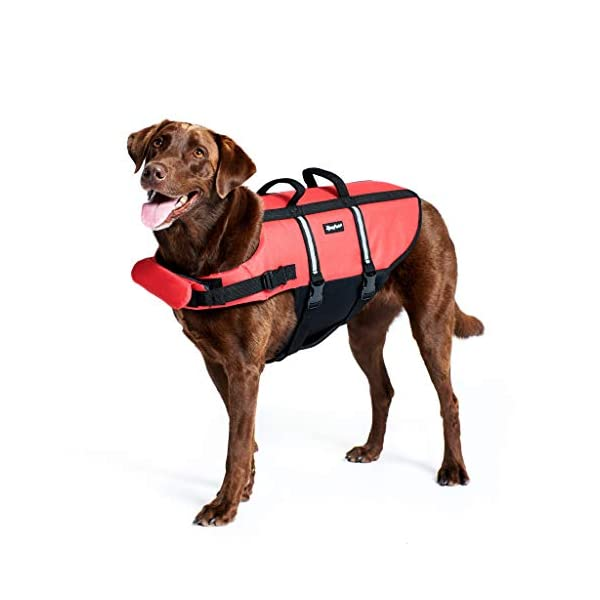 Zippy Paws Life Jacket Dog, Red, Small Click on image for further info. 4