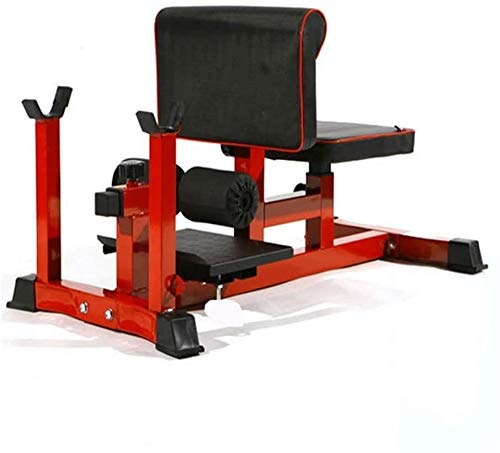 YZPTYD Multifunctional Weight Bench Deep Squat Rome Chair, Push Up Ab Workout Home Gym Machine, Pro Squat Machine Leg Waist Exercise Fitness Equipment Fitness Equipment,Colour:Red (Color : Red)