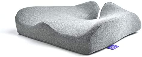 Top 10 Best cushions for back pain relief Reviews