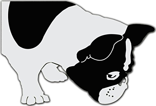 Bella the French Bulldog Sniffing Decal for 13' Macbook