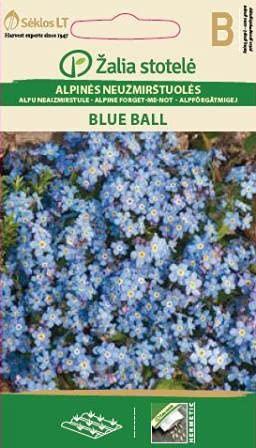 Seklos LT   VERGISSMEINNICHT BLUE BALL   Mehrjährig Pflanze   Blumensamen   Mit langer Blühdauer   1 Pack