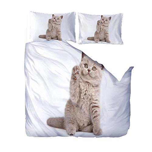 PANDAWDD Duvet Cover With 2 Pillowcases 3D Printed Bedding Set With Zipper Closure Unique Design Anti-Allergic Double Duvet Cover Set Double,Yellow Kitten - 200X200cm