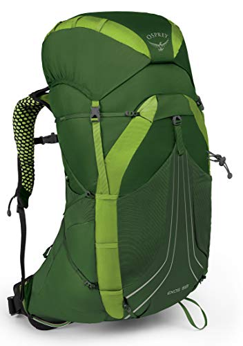 Osprey Packs Exos 58 Backpacking Pack, Tunnel Green, Large