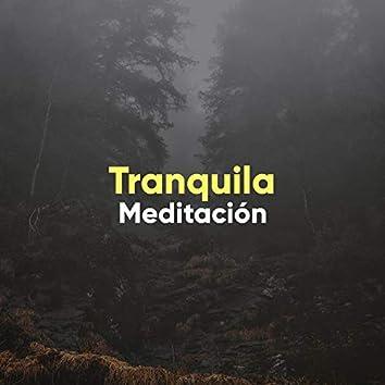 # 1 A 2019 Album: Tranquila Meditación