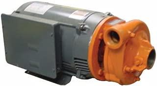 Pentair B54571 B2-1/2TPMS Berkeley Type B-Series 3-Phase Electric Motor Drive Single Stage Centrifugal Pump, 5 HP, 3600-RPM