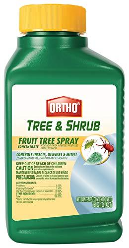 Ortho Tree & Shrub Fruit Tree Spray, 16-Ounce