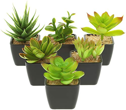 com-four® 6X Plantas Artificiales, Plantas Decorativas engañosamente