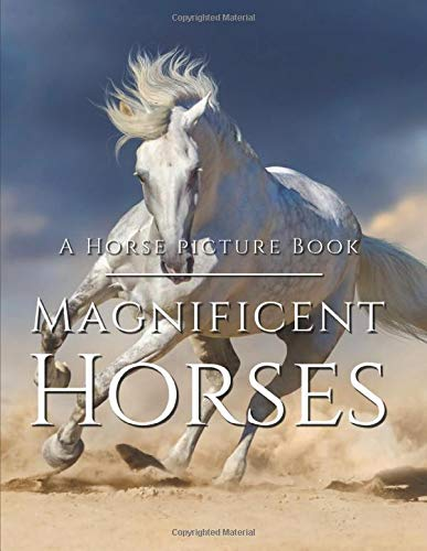 Horse Picture Book - Magnificent Horses: Amazing Horse Photo Book - Full of Breath-Taking Photography Of These Beautiful Creatures