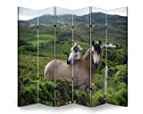 6 Panels Room Divider Screen Partition Two Horses Nuzzling in The Country Side Folding Privacy Screen Separator Indoor Outdoor Freestanding Protective Wall Divider