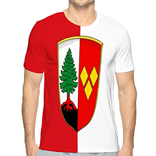Mens Short Sleeve tee Quick-Dry Crewneck Athletic T-Shirtsfl tee T-Shirt XXL
