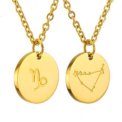 AFSTALR Sternzeichen Kette Steinbock Gold für Damen Horoskop Kette Mutter Tochter Freunde Geburtstagsgeschenk