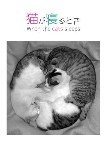 猫が寝るとき