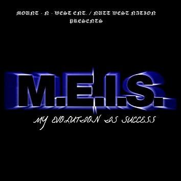 M.E.I.S.