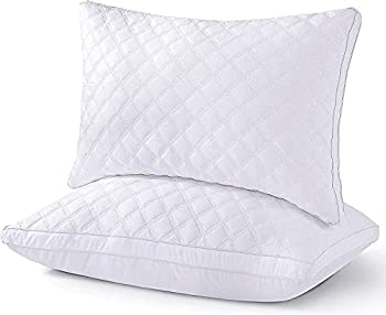 2-Pack Premium Down Alternative Queen Pillow with 100% Cotton Cover