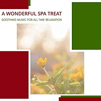 A Wonderful Spa Treat - Soothing Music For All Time Relaxation