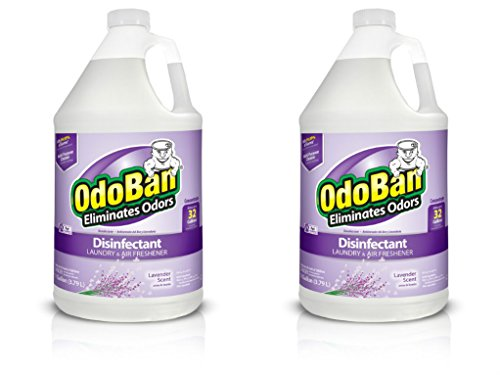 OdoBan Multipurpose Cleaner Concentrate, 2 Gal, Lavender Scent - Odor Eliminator, Disinfectant, Flood Fire Water Damage Restoration
