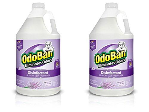 OdoBan Multipurpose Cleaner Concentrate, 2 Gallons, Lavender Scent - Odor Eliminator, Disinfectant, Flood Fire Water Damage Restoration
