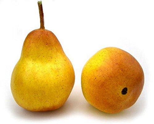 Artificial 4 Pear, Yellow/Bosc, Box of 12 Fake Decorative Fruit