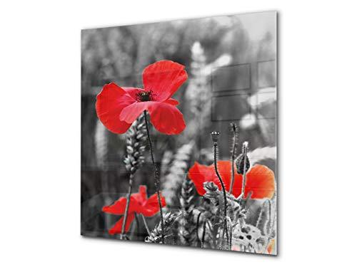 Concept Crystal Glas Küchenrückwand – Hartglas-Rückwand – Foto-Rückwand BS03 Serie Blume: Poppies Meadow Field