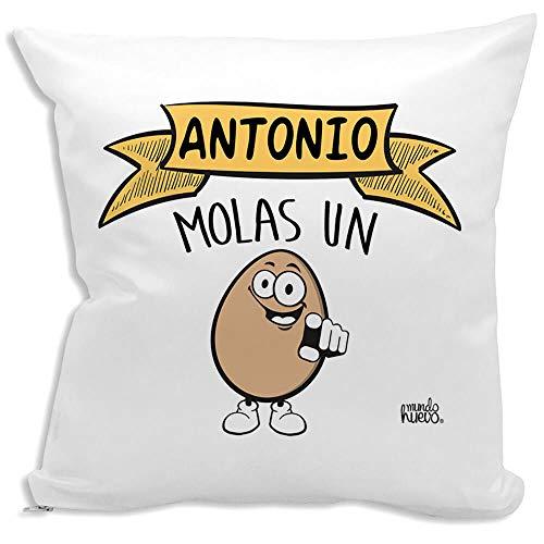 mundohuevo Cojin Decorativo, Original y Personalizado para Regalo con Nombre. Incluye Relleno. Antonio Molas un Huevo. 42,5 X 42,5 cm. Cojines con Agradable Tacto de Algodon.