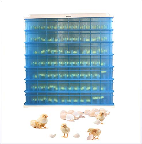 Amber Ncubator, High Capacity Cabinet Incubator,Poultry Hatcher for Chickens Ducks Goose Quail Birds, Eggs Incubator with Digital & Automatic Temperature Control Functions, 360-1320 Eggs,1080
