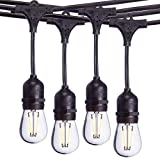 Sterno Home 48-Ft Vintage-Style Waterproof Outdoor LED String Lights – Hanging...