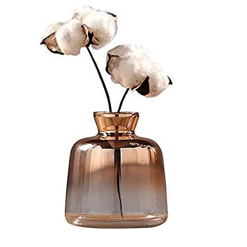 Tiamu Vaso in vetro nordico placcato oro galvanizzato vaso di fiori per abitazioni, cultura, fiori secchi, bottiglia decorativa (12x11x10cm)