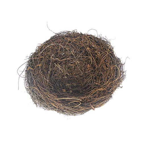 Big Bird Nest - 8