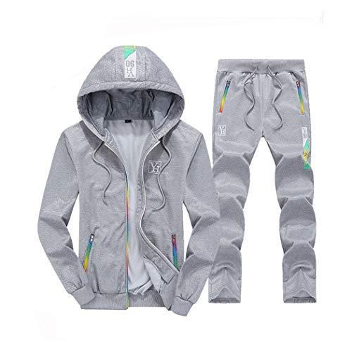 watersouprty Mens Casual Tracksuits 2 Pieces Sets Sports Jogging Hooded Cardigan Sweat Suits (Gray, L)
