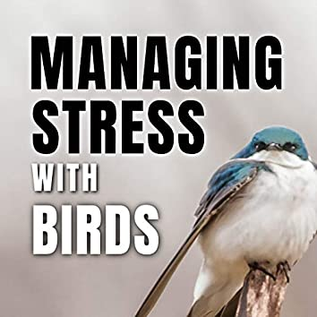 Managing Stress with Birds
