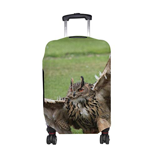 Grass Owl Wings Wingspan Paws Claws Pattern Print Travel Luggage Protector Baggage Suitcase Cover Fits 18-21 Inch Luggage