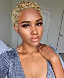 BeiSDWig Short Curly Hair Wig Synthetic Curly Wigs for Black Women African American Women Wigs Short Hairstyle (BeiSDWig-9641F)