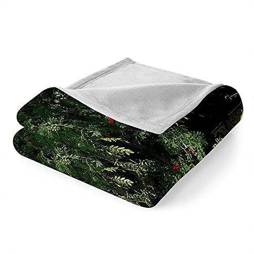 Mantas para Sofa Manta Microfibra de Franela Suave Cálido Batamanta Mujer Manta Pequeña para Cama o Sofá 150x200 cm Casa de Madera del Bosque
