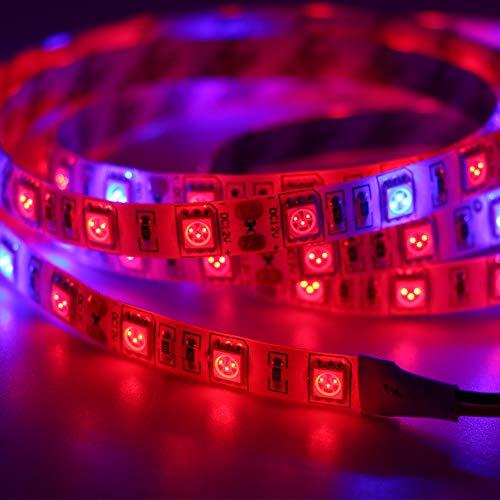 Zimmer Pflanzenlampe LED Grow Lights Dc 12v Vollspektrumlampe Pflanze Grow Light Strip Rot Blau Hydroponic Apollo Phyto Lamp Wächst Licht 500cm 3red 1blue