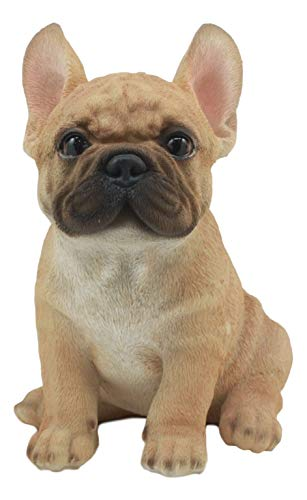 Ebros Realistic Lifelike French Bulldog Puppy Statue 7' Tall Frenchie Figurine Dog Animal Collectible