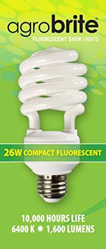Agrobrite FLC26D 26-Watt Spiral Compact Fluorescent Grow Light Bulb (130W equivalent CFL), 6400K