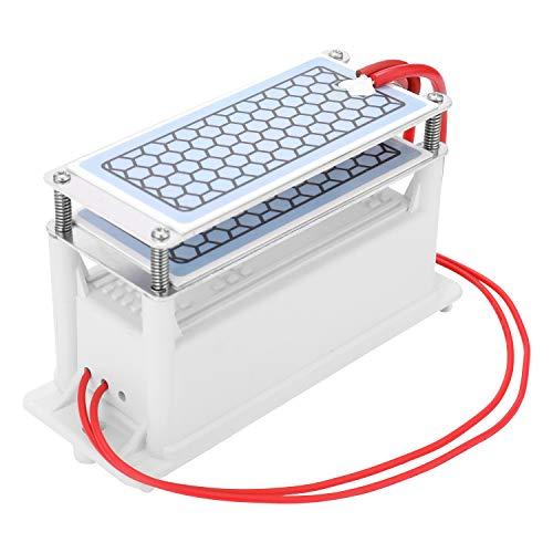 Generador de Ozono - Entweg Generador de ozono de cerámica portátil de 10 g/h Doble placa integrada Ozonizador Purificador de aire de agua