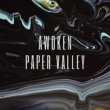 Paper Valley