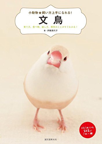 文鳥: 育て方、食べ物、接し方、病気のことがすぐわかる! (小動物★飼い方上手になれる!)
