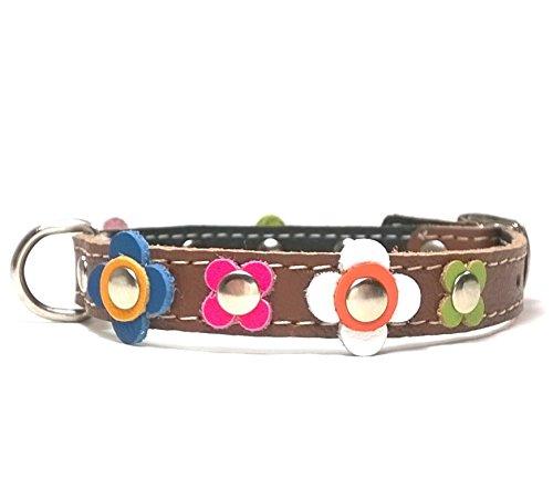 Superpipapo Hunde-Halsband, Handmade Braun Leder für Welpen, Chihuahuas und Kleine Hunde, Ausgefallen Vintage Design Floral mit Bunt Farbig Blumen, 30 cm XXS: Halsumfang 20-25 cm, Breit 13mm